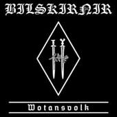 BILSKIRNIR